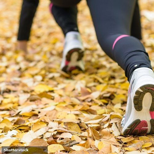 Check out these playlist ideas to get geared up for exercising in the fall.