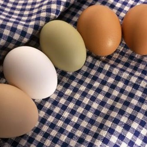 Knowing where your eggs came from is the first step towards eating healthier eggs.