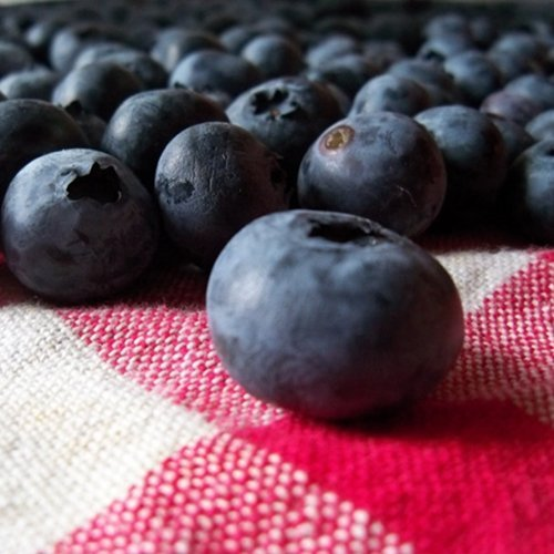 10 super foods that aid in weight loss