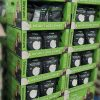 Naturade Debuts in 40 Costco Wholesale Clubs Across US
