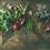 5 Healthy Winter Foods